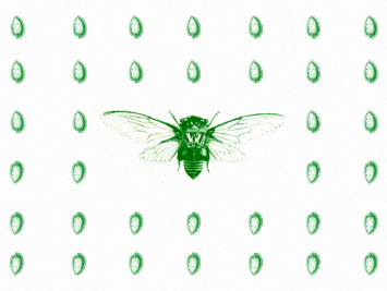 Graphic with green flies. Illustration by Laura Padilla Castellanos