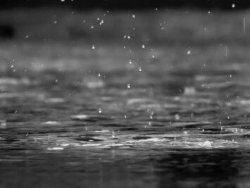 Rain on a lake. Photo: Reza Shayestehpour.
