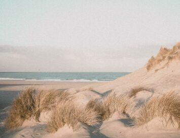 Beach. Photo: Chantal Kemp.