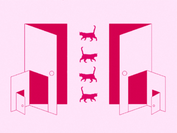 Graphic with a series of doors and four cats