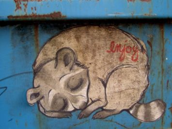"""Graffiti of sleeping raccoon with the word """"enjoy"""" written on it. Image: Pearl Pirie / Creative Commons"""
